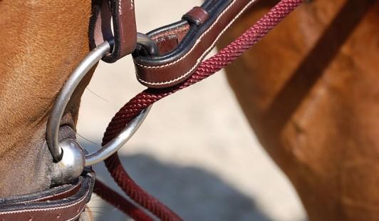 B732   Kožené prevlečky Dy´on z nylonovou šnúrou